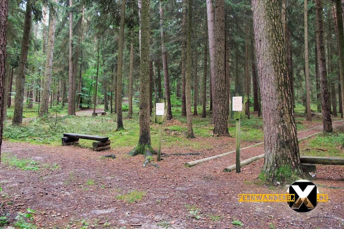 Oase der Sinne Suedlicher Steigerwald Wanderweg Muenchsteinach (10)