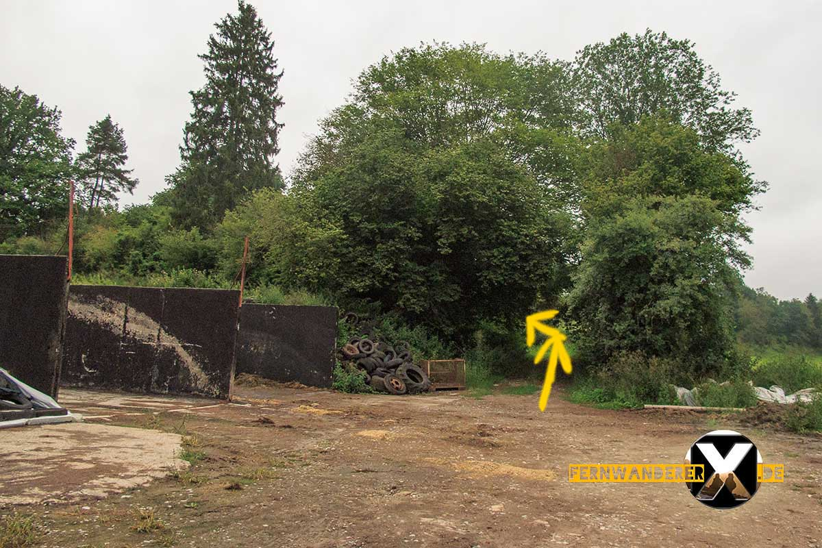 Oase der Sinne Suedlicher Steigerwald Wanderweg Muenchsteinach (17)