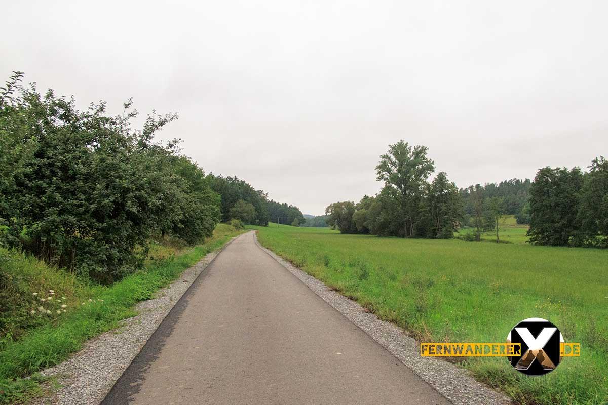 Oase der Sinne Suedlicher Steigerwald Wanderweg Muenchsteinach (2)