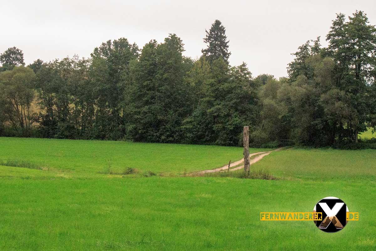 Oase der Sinne Suedlicher Steigerwald Wanderweg Muenchsteinach (5)
