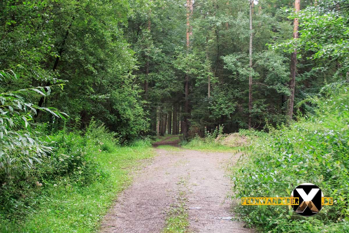 Oase der Sinne Suedlicher Steigerwald Wanderweg Muenchsteinach (9)