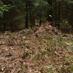 Defcon 5 Bivy tent biwakzelt bushcraft tarp tarnung wasserdicht 2 150x150 - Das Defcon 5 Biwakzelt-Bivi Zelt Gen III - Snipers nest -