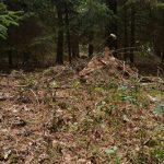 Defcon 5 Bivy tent biwak isolated bush craft tarp camouflage waterproof 2 150x150 - The Defcon 5 bivouac -Bivi tent gene III - Snipers nest -