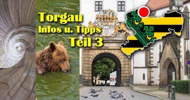 Torgau 3 Staedtereise Reformation Hartenfels Altstadt 390x205 - Torgau Städtereise Sehenswürdigkeiten Teil 3