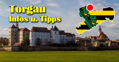 Torgau Staedtereise Reformation Hartenfels Altstadt 390x205 - Torgau Städtereise Sehenswürdigkeiten