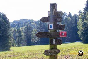 Höhenglücksteig Via Ferrata Klettersteig in der Fränksichen Schweiz Teil 1 teil 2 Teil 3 Schwierigkeit 5 300x200 - Höhenglücksteig in der Fränksichen Schweiz-Klettersteig-Via Ferrata