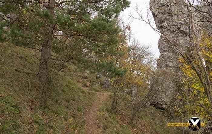 Wandern am Walberla und Rodenstein Fernwanderer X de  1 700x445 - Walberla Wanderung - Das Tor zur Fränkischen Schweiz