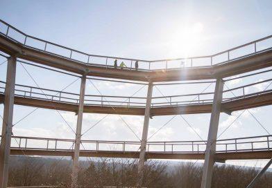 Baumwipfelpfad Steigerwald – Ausflugsziel für Familien und Wanderer