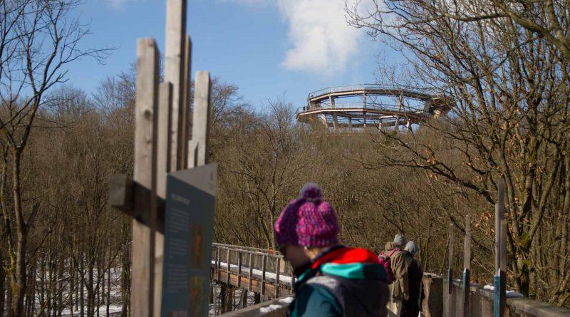Baumwipfelpfad Steigerwald im Naturpark at naturepark Familiy Holiday excursion destinations familienfreundlich 5 800x445 - Baumwipfelpfad Steigerwald - Ausflugsziel für Familien und Wanderer