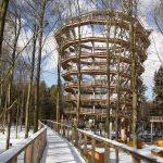 Baumwipfelpfad Steigerwald im Naturpark at naturepark Familiy Holiday excursion destinations familienfreundlich 8 150x150 - Baumwipfelpfad Steigerwald - Ausflugsziel für Familien und Wanderer