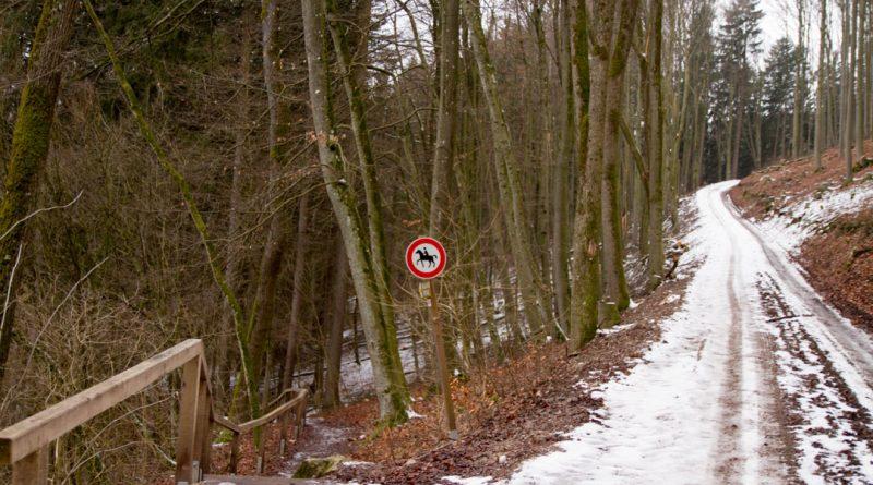 Lillachtal lillachquelle sinterstufen weisenohe tour wandern 10 800x445 - SINTERSTUFEN-Wanderung Weißenohe - Lillachtal - Lillachquelle - Lilling