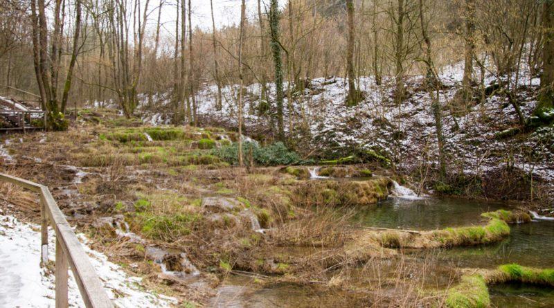 Lillachtal lillachquelle sinterstufen weisenohe tour wandern 12 800x445 - SINTERSTUFEN-Wanderung Weißenohe - Lillachtal - Lillachquelle - Lilling