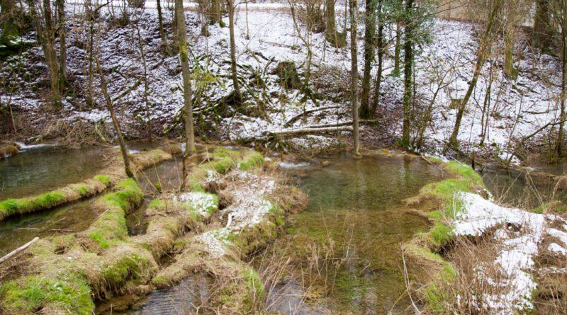 Lillachtal lillachquelle sinterstufen weisenohe tour wandern 13 800x445 - SINTERSTUFEN-Wanderung Weißenohe - Lillachtal - Lillachquelle - Lilling
