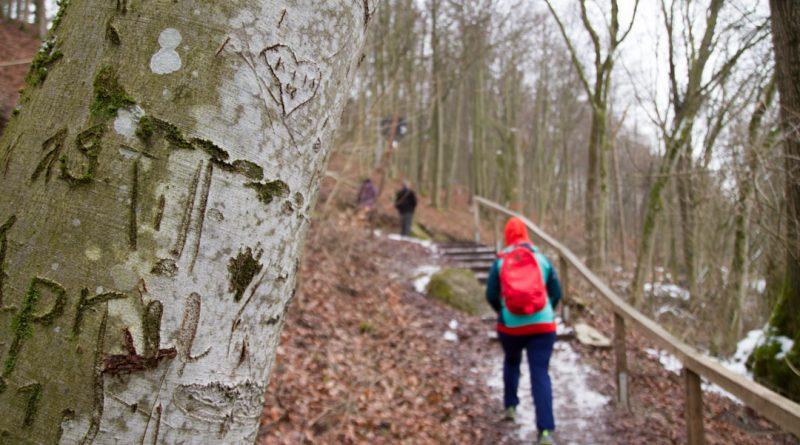 Lillachtal lillachquelle sinterstufen weisenohe tour wandern 17 800x445 - SINTERSTUFEN-Wanderung Weißenohe - Lillachtal - Lillachquelle - Lilling