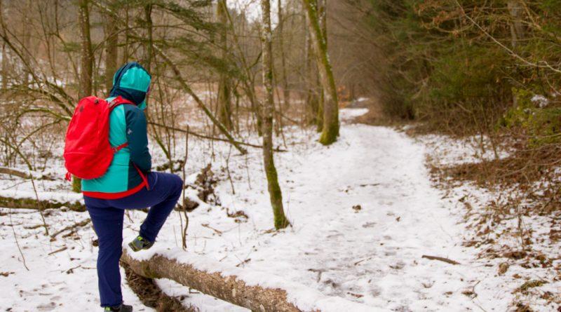 Lillachtal lillachquelle sinterstufen weisenohe tour wandern 6 800x445 - SINTERSTUFEN-Wanderung Weißenohe - Lillachtal - Lillachquelle - Lilling