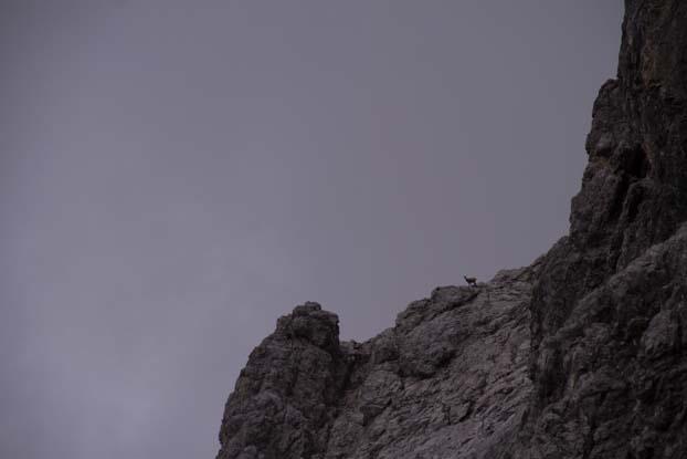 Bertgenhuette Teufelsloecher 13 - Teufelslöcher 2700hm über Bertgenhütte