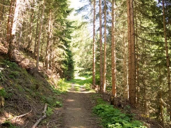 Hinterthal Ueber Bertgenhuette zu den Teufelsloechern 3 - Teufelslöcher 2700hm über Bertgenhütte