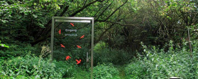 Oase der Sinne Suedlicher Steigerwald Wanderweg Muenchsteinach 16 696x279 - Oase der Sinne Wanderweg Münchsteinach - Südlicher Steigerwald