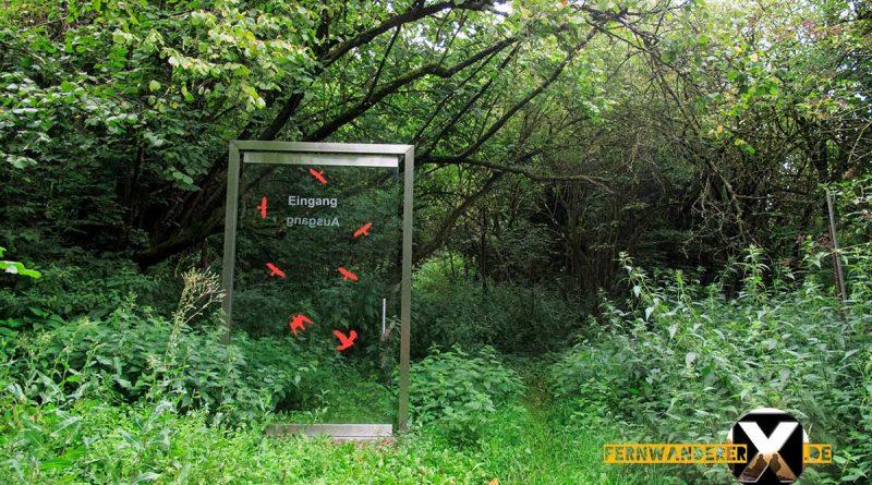 Oase der Sinne Suedlicher Steigerwald Wanderweg Muenchsteinach 16 800x445 - Oase der Sinne Wanderweg Münchsteinach - Südlicher Steigerwald