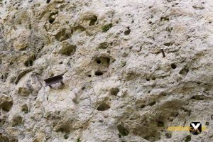 Höhenglücksteig Via Ferrata Klettersteig in der Fränksichen Schweiz Teil 1 teil 2 Teil 3 Schwierigkeit 19 300x200 - Höhenglücksteig in der Fränksichen Schweiz-Klettersteig-Via Ferrata