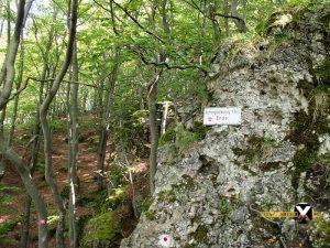 Höhenglücksteig Via Ferrata Klettersteig in der Fränksichen Schweiz Teil 1 teil 2 Teil 3 Schwierigkeit 23 300x225 - Höhenglücksteig in der Fränksichen Schweiz-Klettersteig-Via Ferrata