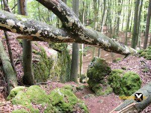 Höhenglücksteig Via Ferrata Klettersteig in der Fränksichen Schweiz Teil 1 teil 2 Teil 3 Schwierigkeit 30 300x225 - Höhenglücksteig in der Fränksichen Schweiz-Klettersteig-Via Ferrata