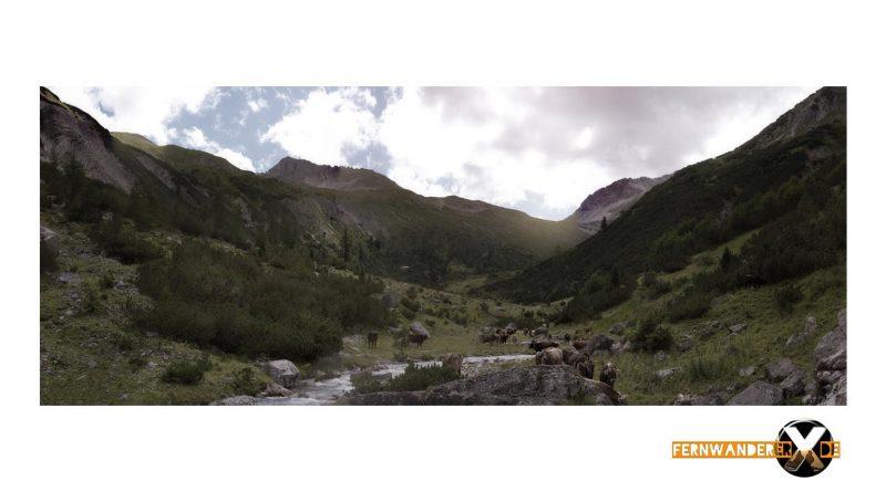 Bergpanorame Fotografie auf dem Weg zur ansbacher Hütte im Lechtal Lechtaler Alpen Landschaftsfotografie1 800x445 - Die Kühe im Tal