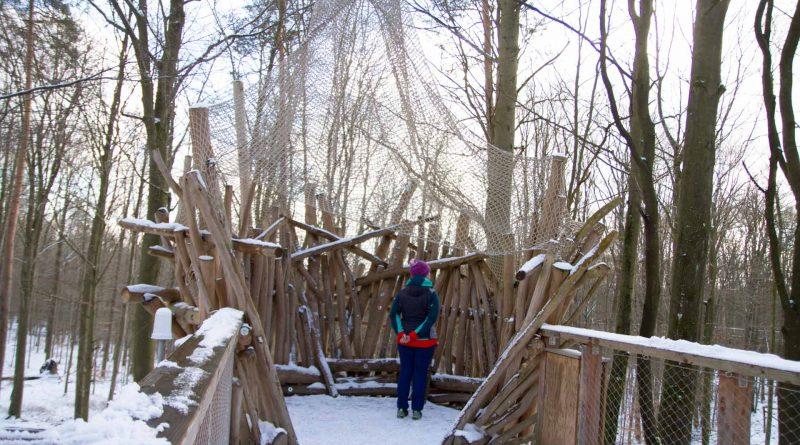 Baumwipfelpfad Steigerwald im Naturpark at naturepark Familiy Holiday excursion destinations familienfreundlich 16 800x445 - Baumwipfelpfad Steigerwald - Ausflugsziel für Familien und Wanderer