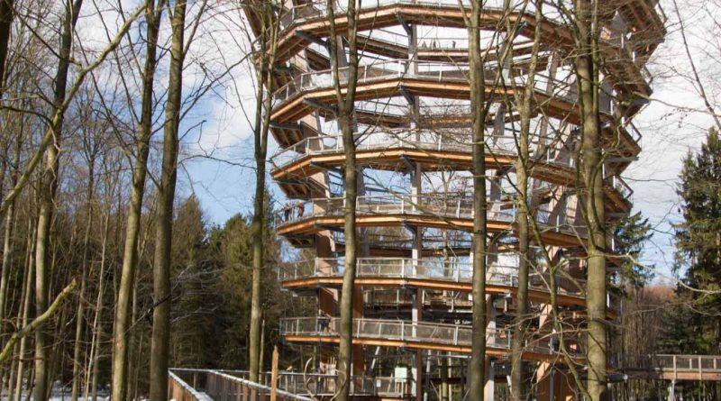 Baumwipfelpfad Steigerwald im Naturpark at naturepark Familiy Holiday excursion destinations familienfreundlich 8 800x445 - Baumwipfelpfad Steigerwald - Ausflugsziel für Familien und Wanderer