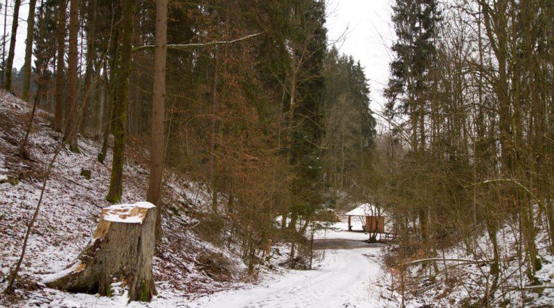 Lillachtal lillachquelle sinterstufen weisenohe tour wandern 4 800x445 - SINTERSTUFEN-Wanderung Weißenohe - Lillachtal - Lillachquelle - Lilling