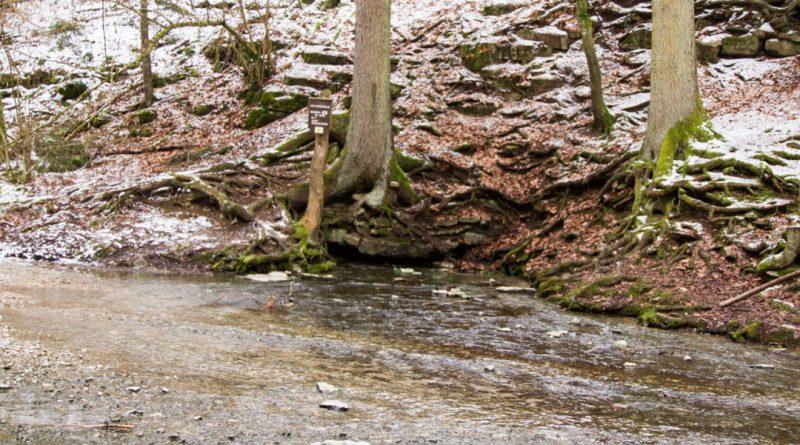 Lillachtal lillachquelle sinterstufen weisenohe tour wandern 5 800x445 - SINTERSTUFEN-Wanderung Weißenohe - Lillachtal - Lillachquelle - Lilling