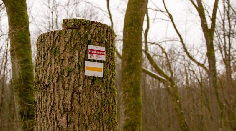 Lillachtal lillachquelle sinterstufen weisenohe tour wandern 9 800x445 - SINTERSTUFEN-Wanderung Weißenohe - Lillachtal - Lillachquelle - Lilling