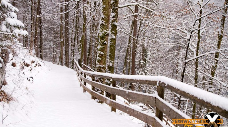 Wandern am Koenigssee Runwanderweg Schoenau Hiking at 11 800x445 - Der Königssee - Wanderung am Königssee
