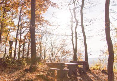 (Deutsch) Baudenbach Obst – und Geologielehrpfad – Wandern Südlicher Steigerwald
