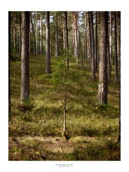 Landschaftsfotografie making of fernwandererx fränkische schweiz