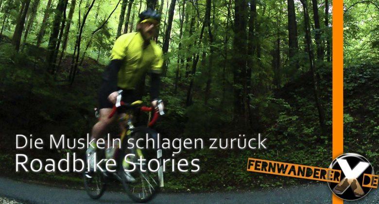Rennrad Training Wald Berg auffahrt